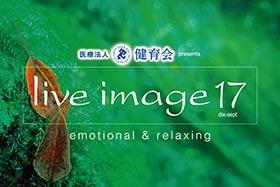 image17_logo2017kt-s
