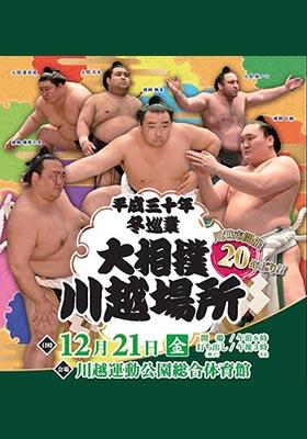 川越相撲トリミング