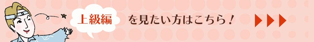 タカラヅカ・ワールド告知上級編誘導2